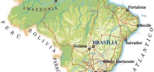 brasile cartina